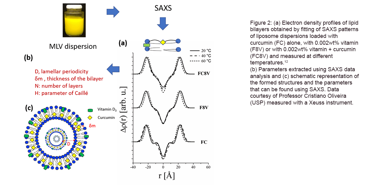 SAXS_lipid bilayers