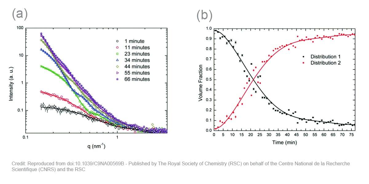 SAXS Nanoparticles